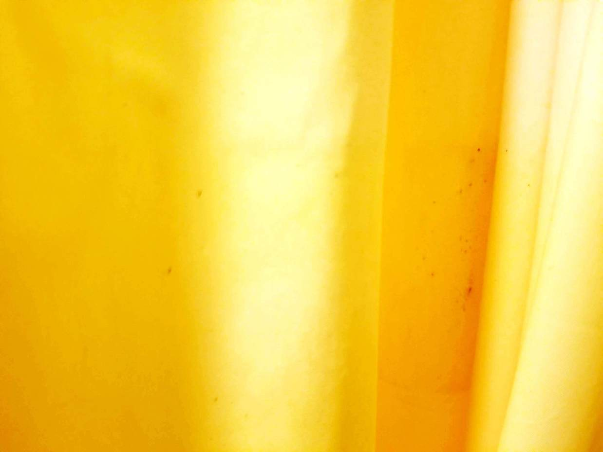 どうしてシャワーカーテンにカビが生える